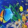 Постельное белье «Подводный мир 1» 1,5 - спальное, Перкаль, Текс-Дизайн