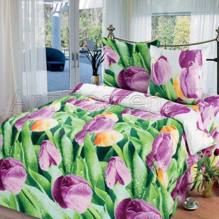 «Триумф» двуспальное с европростыней постельное белье, Бязь, Арт Дизайн
