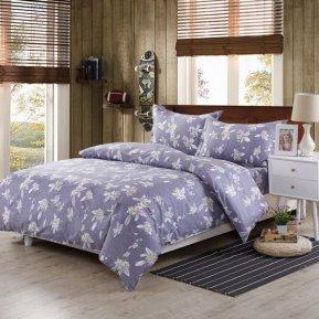«AP-20-173» двуспальное постельное белье, Поплин, Вальтери