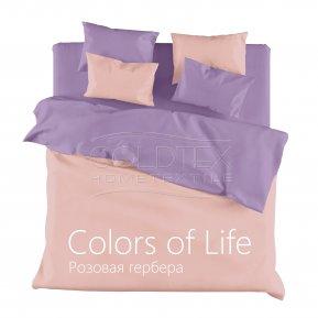 Постельное белье Розовая гербера семейное