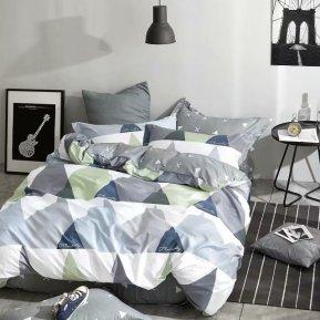 «TPIG2-544-50» двуспальное с европростыней постельное белье, САТИН, TANGO