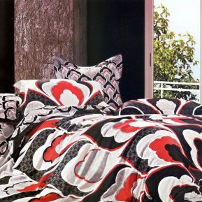 «TS03-869/2» ЕВРО постельное белье, САТИН, TANGO